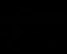 Logo Conservção e Impactos.png