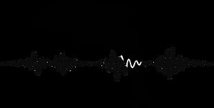 logo Bioacústica.png