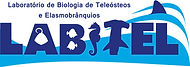 logo labitel RGB b-monitor TV.jpg