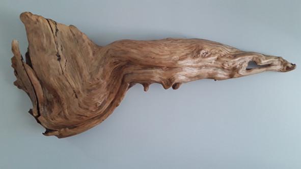Cypress Knee Driftwood Wall Sculpture