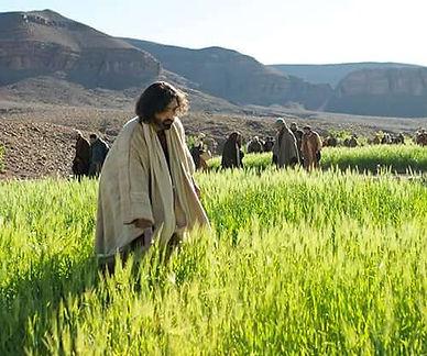 5f3aad4aeb714e3af5aeb377_gospel-films-bl