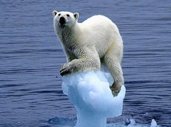 Behöver vi en klimatrapport till?