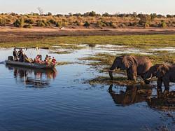 Chobe_River_Botswana_Africa-medium