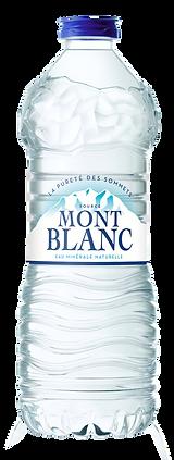 Bouteille Mont Blanc 50cl.png
