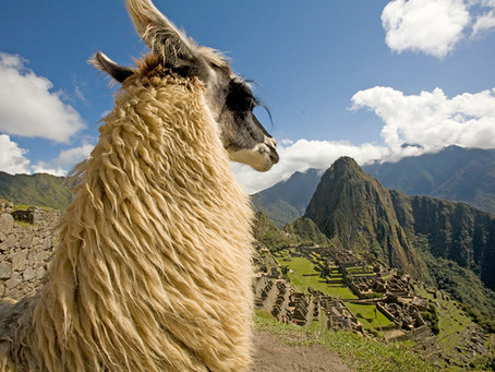Pérou: le Machu Picchu rouvre après 8 mois de fermeture