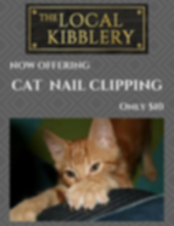 Cheap cat claw clipping. Showing a cat clawing a sofa
