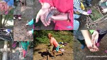 Razmišljanja o doživetjih v poletni gozdni šoli