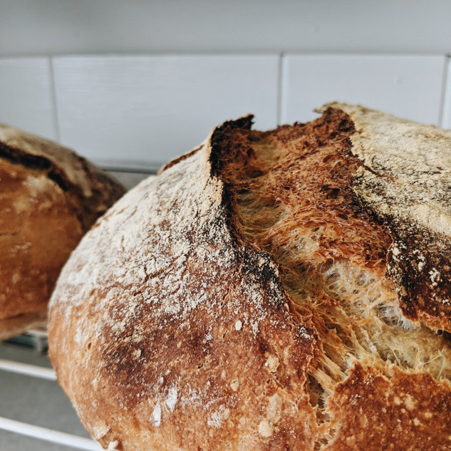 Start with Sourdough