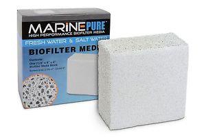 MarinePure Big Block 8″ X 8″ X 4″