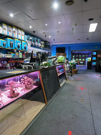 Mentone Aquarium 6