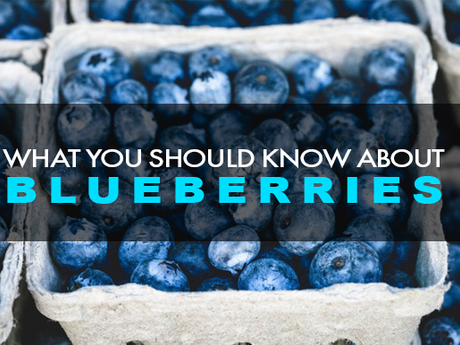 Blueberries: What You Need To Know