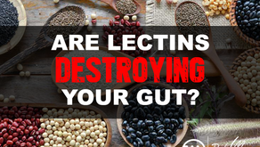 Are Lectins Destroying Your Gut?