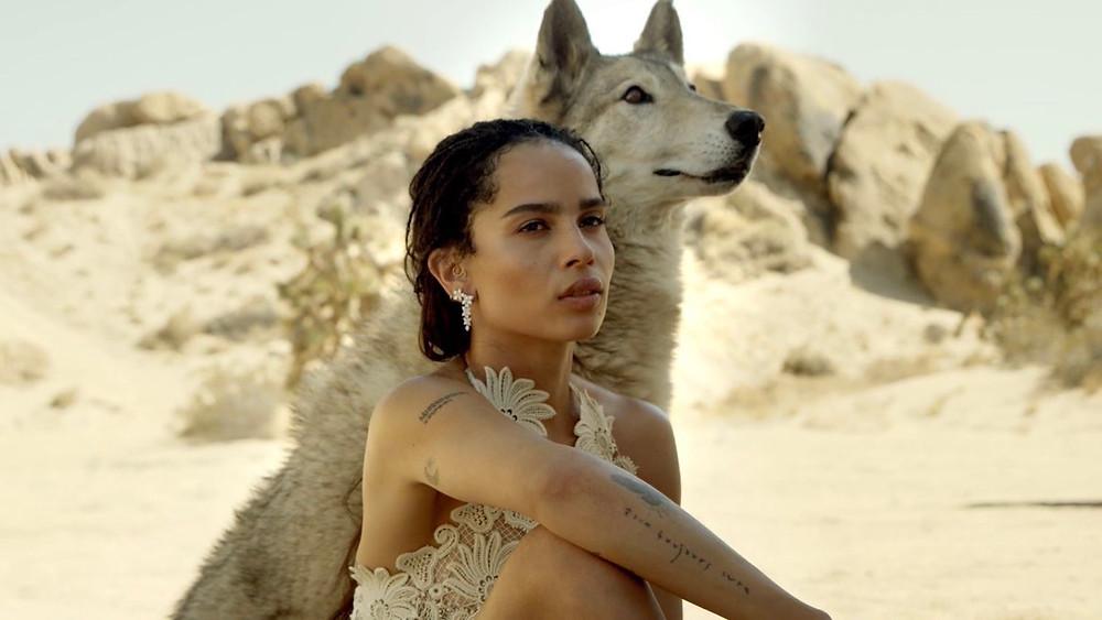 В эффектной фотосессии модель позирует на песке в окружении диких волков.