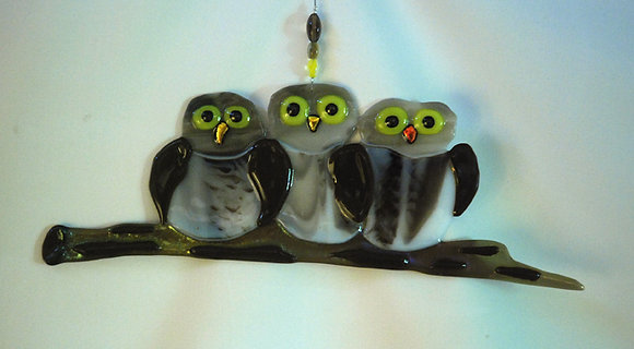 Three Owlets Hanging