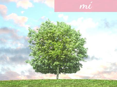 El Árbol vive en Mí