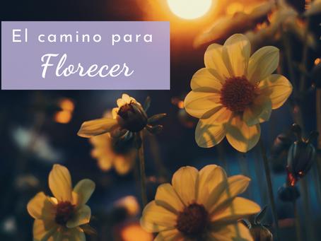 El camino para florecer