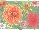 Whimsical Note Cards - Lynn Van Dam Cooper