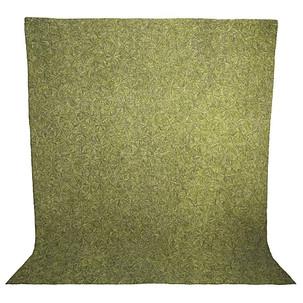 Sand Dollar in Green