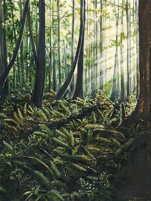 'Natures Palette' Framed Original