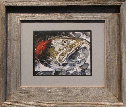 'Quinsam Coho' Small Framed Print