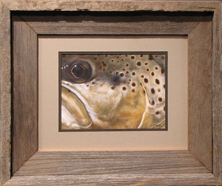 'Brown Trout' Small Framed Print