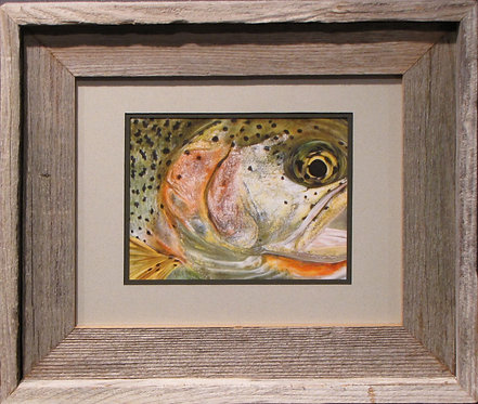 'Cutthroat Trout' Small Framed Print