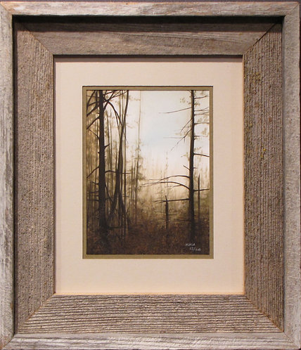 'Beaver Lodge Forest' Small Framed Print