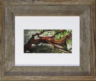 'The Sun Seeker' Small Framed Print