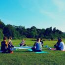 Park Yoga 21.jpg