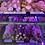 Thumbnail: Pastìccini Mix Box