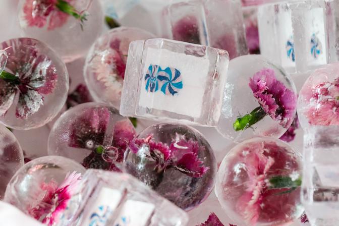 "<img src=""candy bat mitzvah"" alt=""candy theme bat mitzvah, jewel tone bat mitzvah, fun bat mitzvah, pink bat mitzvah, purple, bat mitzvah"">"