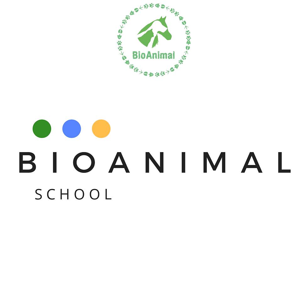 Logo BioAnimal School.png