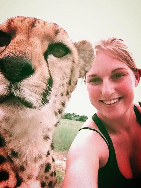harnas-namibia-cheetah
