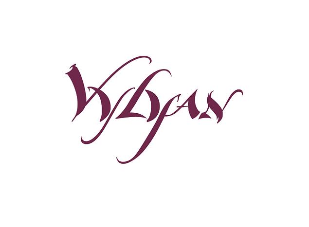VVI logo.png