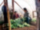 1._Visita_técnica_Araucania.jpg