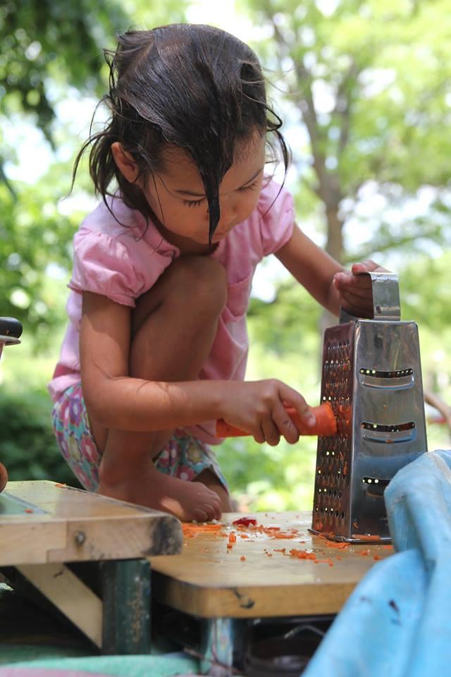 QiQi Grating Carrots