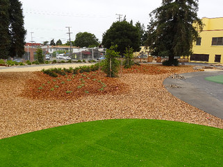 OAKLAND USD PLAY YARD STORMWATER MANAGEMENT