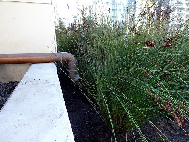 SOLAIRE STORMWATER MANAGEMENT