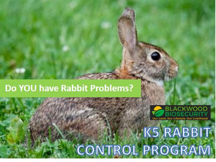 DO YOU HAVE A RABBIT PROBLEM AT YOUR PROPERTY?
