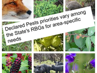Statewide Biosecurity is Supported by the Declared Pest Rate