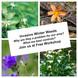 Winter Weeds Awareness Workshops - Bridgetown & Kirup