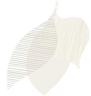 Botanical Graphic