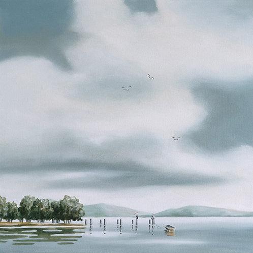 """Pelicans"" - Paper Print or Canvas"