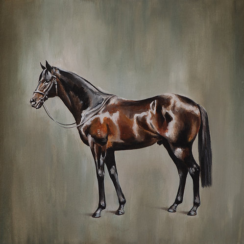 The Horse - Paper Print or Canvas