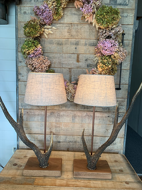 Antler lamps - pair