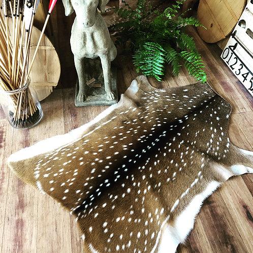 chital deer hides