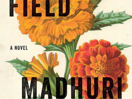 Review: The Far Field by Madhuri Vijay