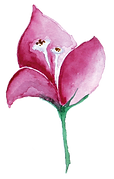 Blume mittel pink.png