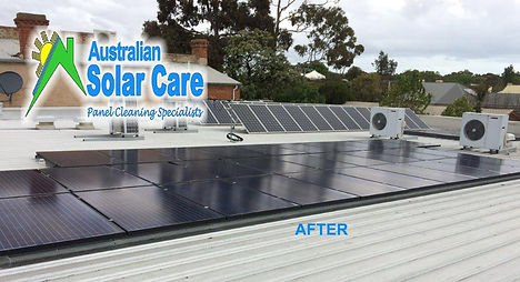 Bird Proofing and Solar Panel Cleaning Specialists