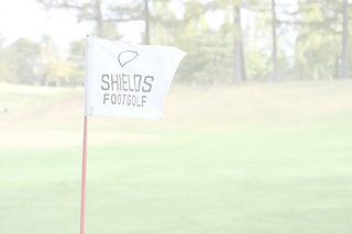 ShieldsFlag.JPG